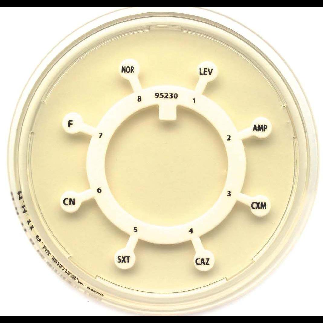 Δίσκοι πολλαπλών αντιβιοτικών