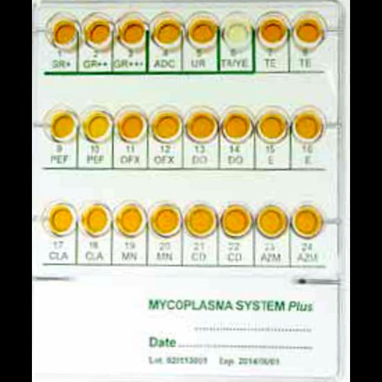 Mycoplasma System Plus